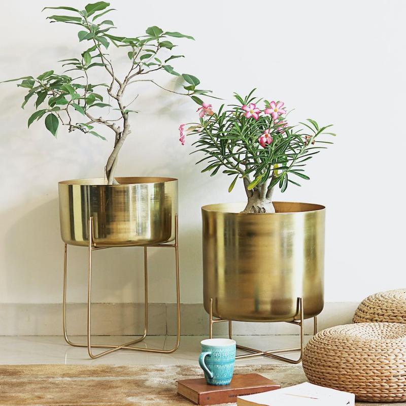 demand plant pots